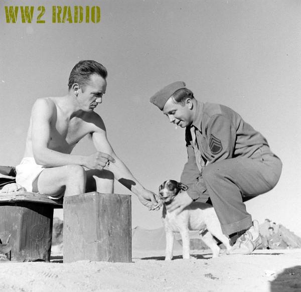 Poste de commandement avancé - Tunisie - 1943 160919071202867514