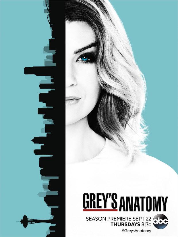 Chirurdzy / Greys Anatomy {Sezon 13} (2016)