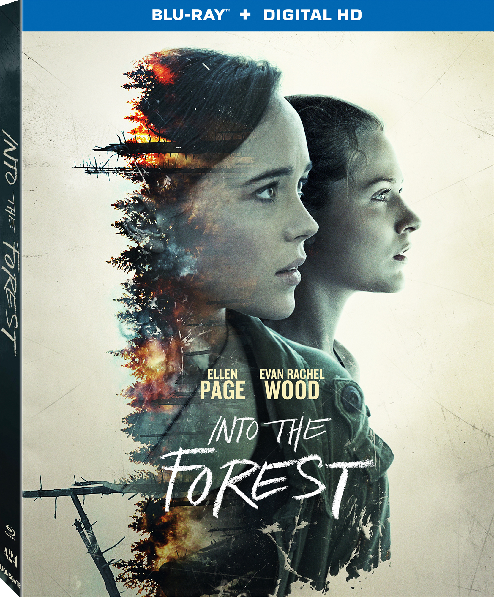 Into the Forest (2015) poster image