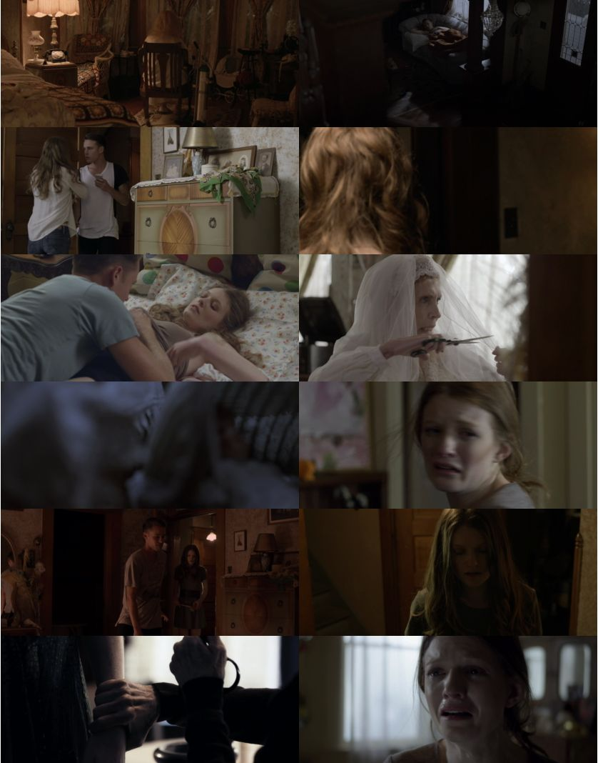 The.Caretaker.2016.1080p.WEB-DL.DD5.1.H264-FGT
