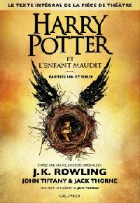 harry-potter,-tome-8---harry-potter-et-l-enfant-maudit-794944-250-400