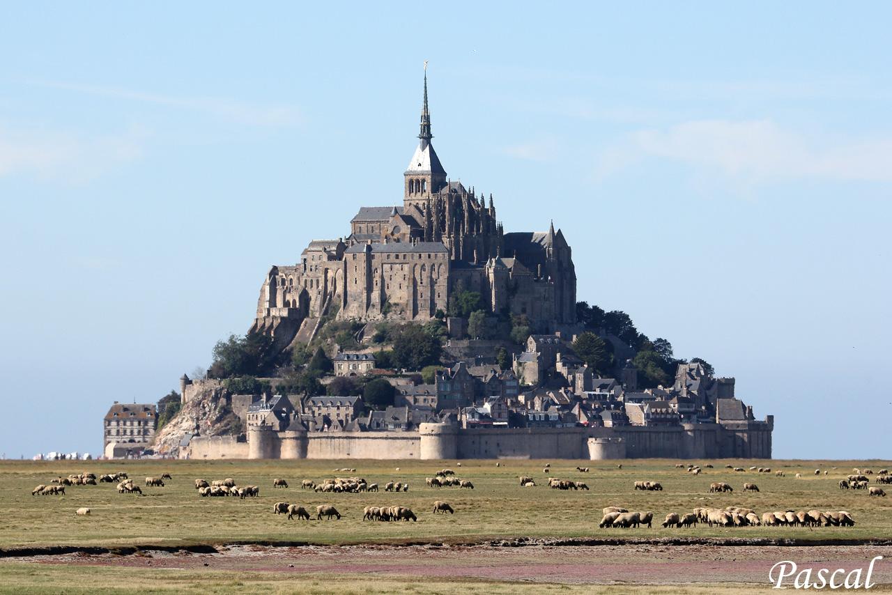 Les herbus de la baie du Mont Saint Michel 160929050234986067