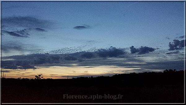 Photographie de Florence