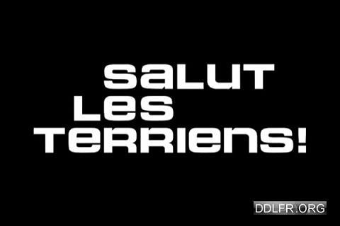 Salut les Terriens c8 2016-2017 replay tv