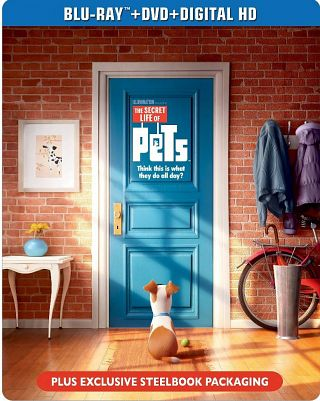 The Secret Life of Pets(2016) poster image