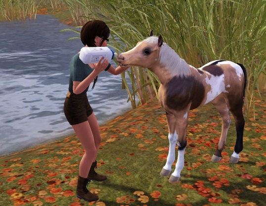 """[Challenge] Teens and Horses """"Sims 3"""" - Page 2 161106012509751964"""