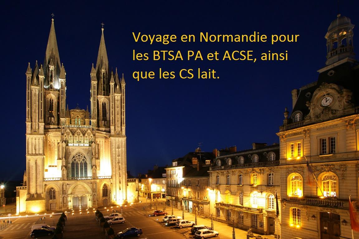 La Normandie: sa manche, ses pommiers, ses vaches, mais pas que... !