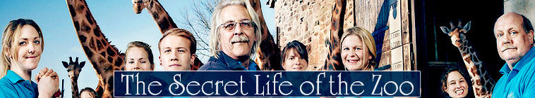 HDTV-X264 Download Links for The Secret Life Of The Zoo S02E01 480p x264-mSD