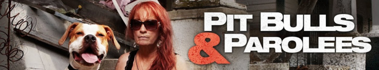 HDTV-X264 Download Links for Pit Bulls and Parolees S08E02 HDTV x264-CRiMSON