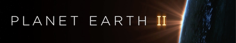 HDTV-X264 Download Links for Planet Earth II S01E04 480p x264-mSD