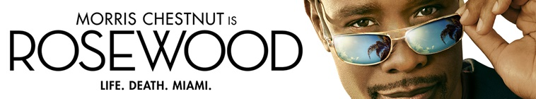 HDTV-X264 Download Links for Rosewood S02E09 XviD-AFG