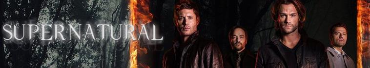 HDTV-X264 Download Links for Supernatural S12E07 HDTV x264-LOL