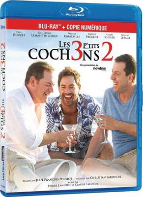 Les 3 p'tits cochons 2 french bluray 720p