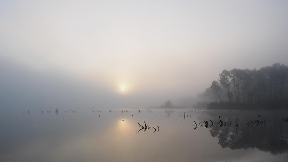 matin sur le lac. 16121412424399037