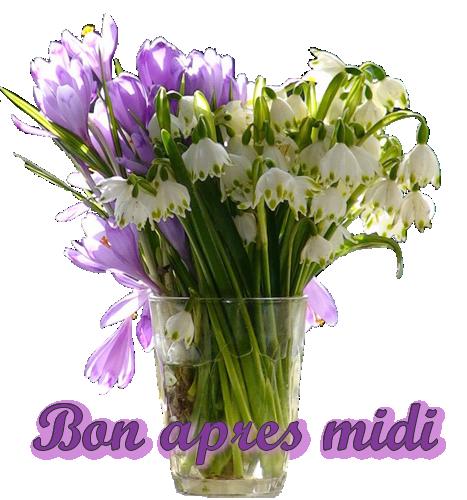 Bon Mercredi 170104015852526802