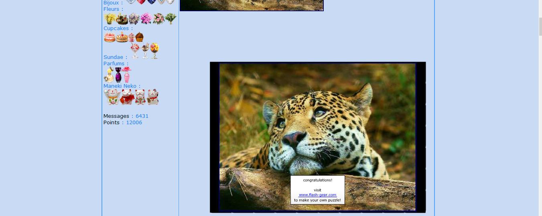 Puzzle #34 - Le léopard 170109011721146788
