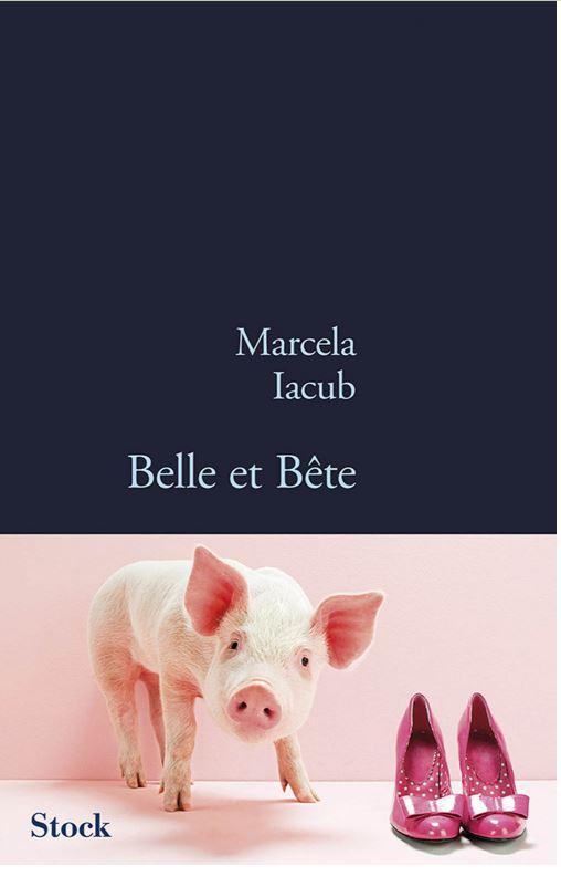 télécharger Belle et bete - Le livre choc sur DSK - Marcela Iacub