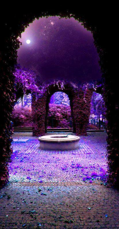 Je vois la vie en mauve violet parme page 229 supertoinette for Mauve la vie claire
