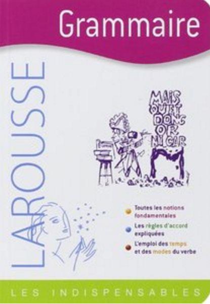 télécharger Larousse - Grammaire : Les indispensables