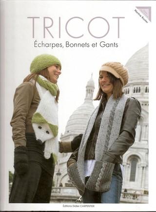 télécharger Tricot echarpes bonnets et gants - Martine Routier