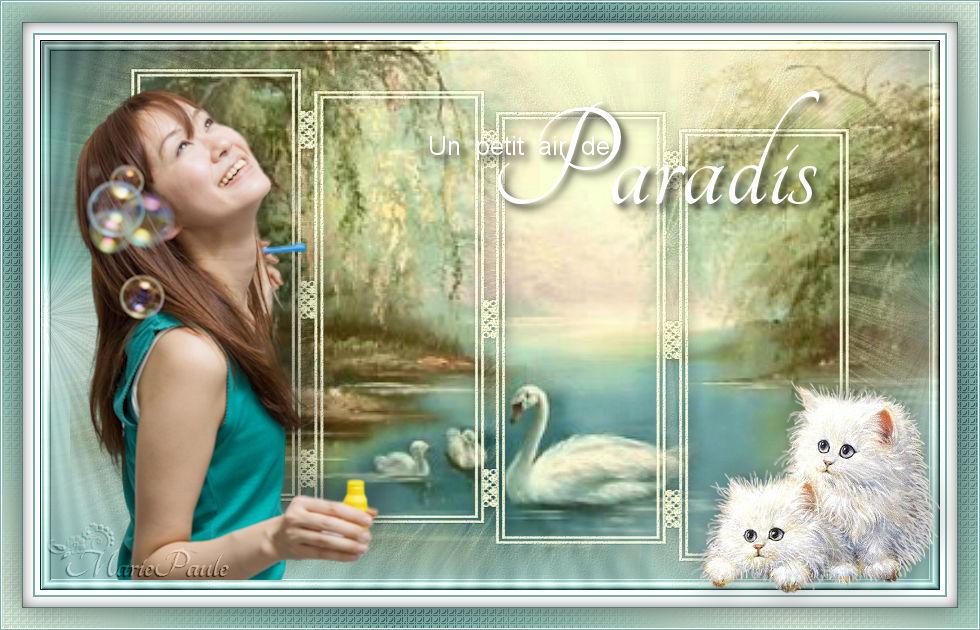 Un petit coin de paradis (PSP) 170215091128837795