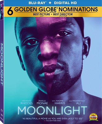 Moonlight BLURAY 720p FRENCH