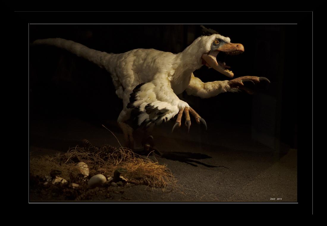 Au temps des dinosaures 17022608570399147