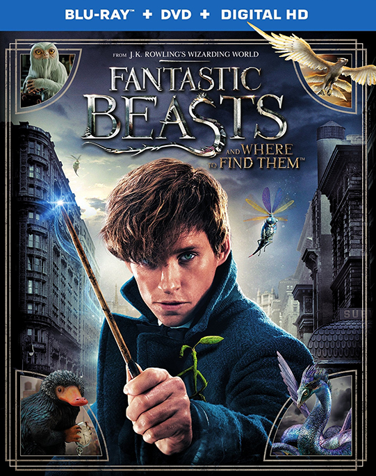 Fantastic Beasts and Where to Find Them (2016) poster image