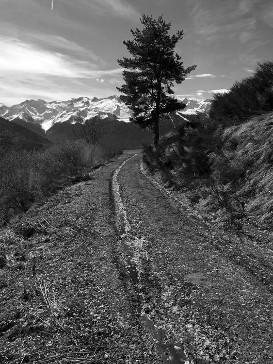 ¤0¤0¤  M'en randonnant en Piémont  ¤0¤0¤ 170304094930702343