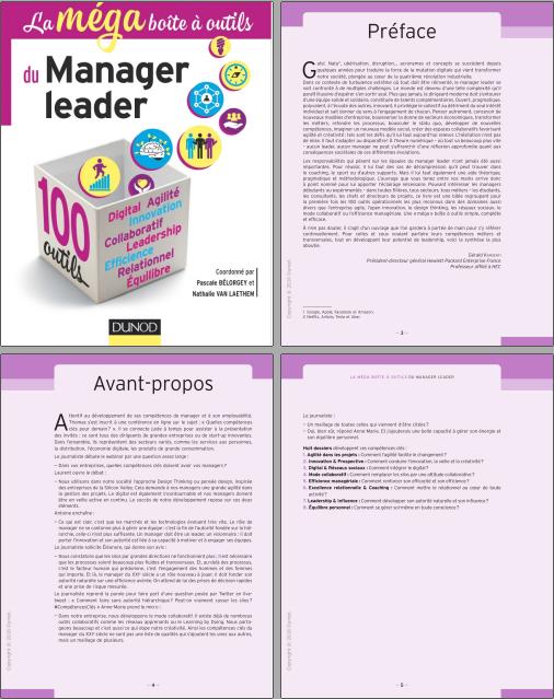 télécharger La méga boîte à outils du manager leader : 100 outils