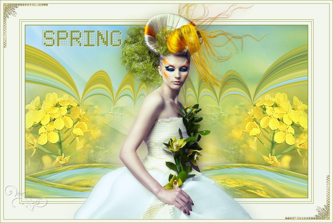 Spring(Psp) 170309080851960437