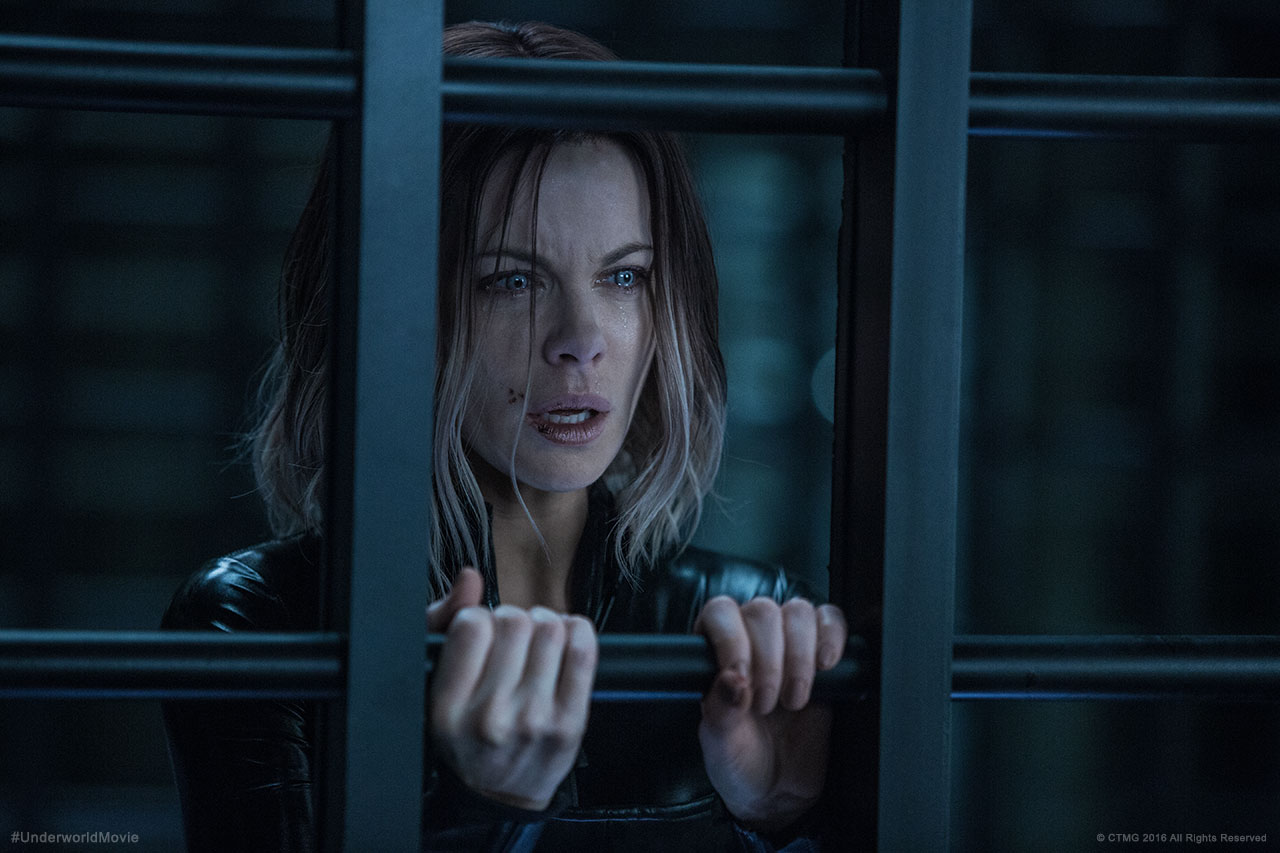 Underworld: Blood Wars (2016) image