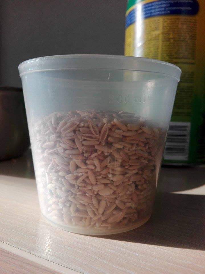 préparation avoine pelée/grau d'avoine 170316114605425736