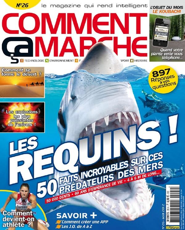 télécharger Comment Ça Marche N°26 - Les Requins !