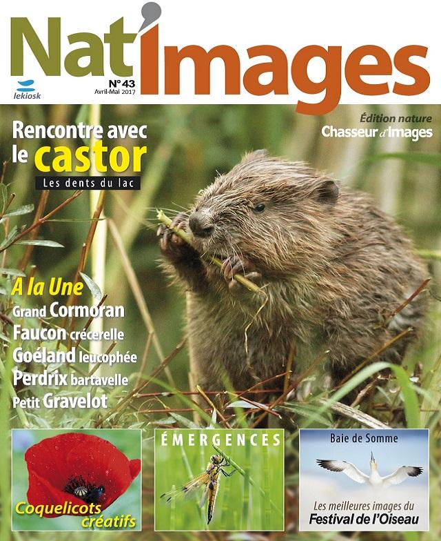 télécharger Nat Images N°43 - Avril-Mai 2017