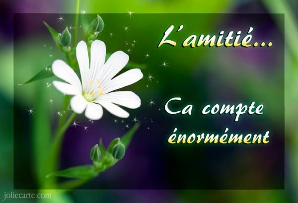 L'AMITIE 170424103650291815