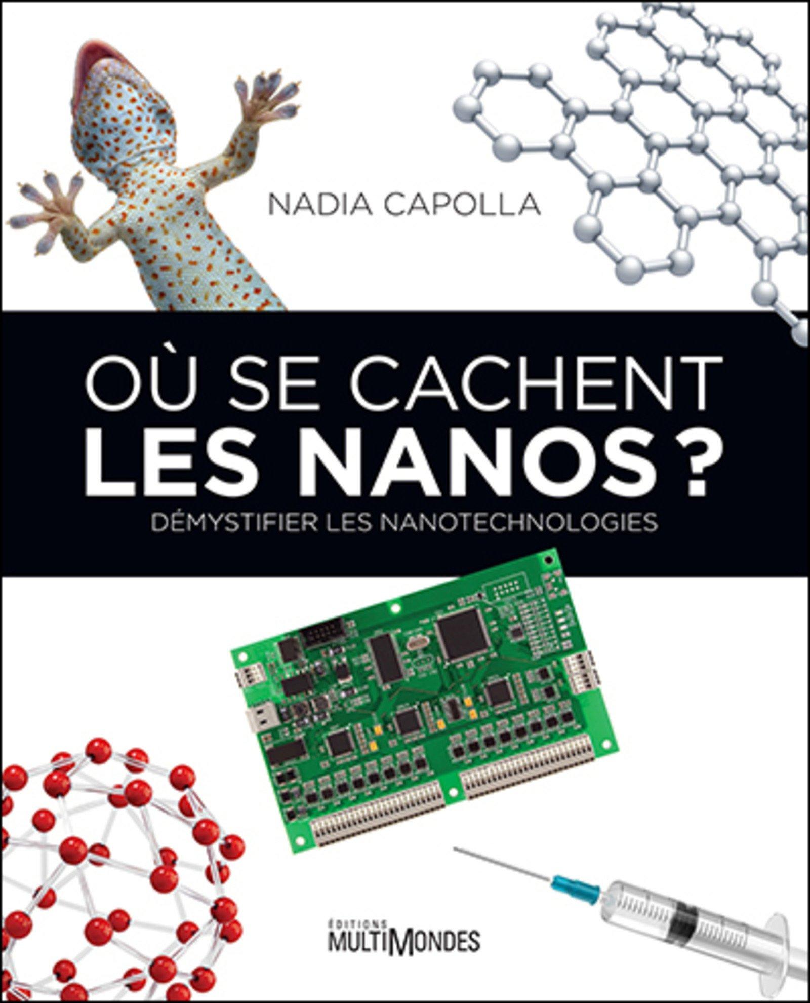 télécharger Où se cachent les Nanos ? : Démystifier les nanotechnologies
