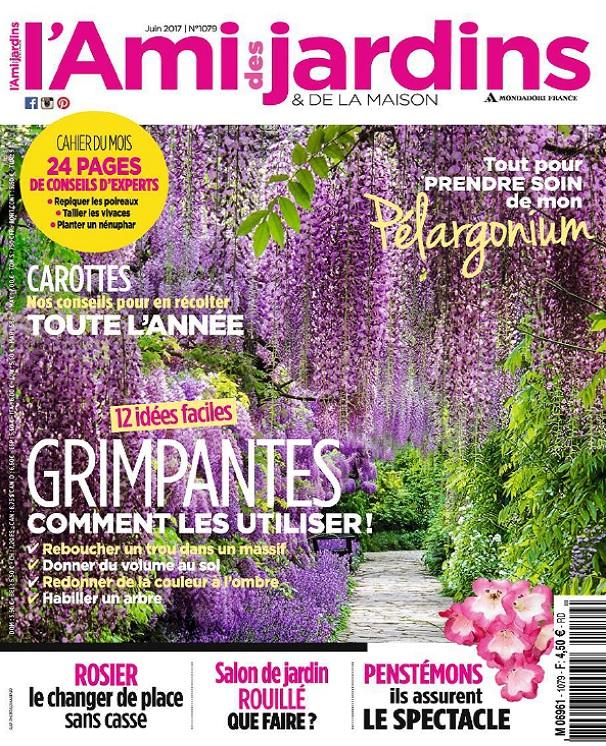 télécharger L'Ami Des Jardins N°1079 - Juin 2017