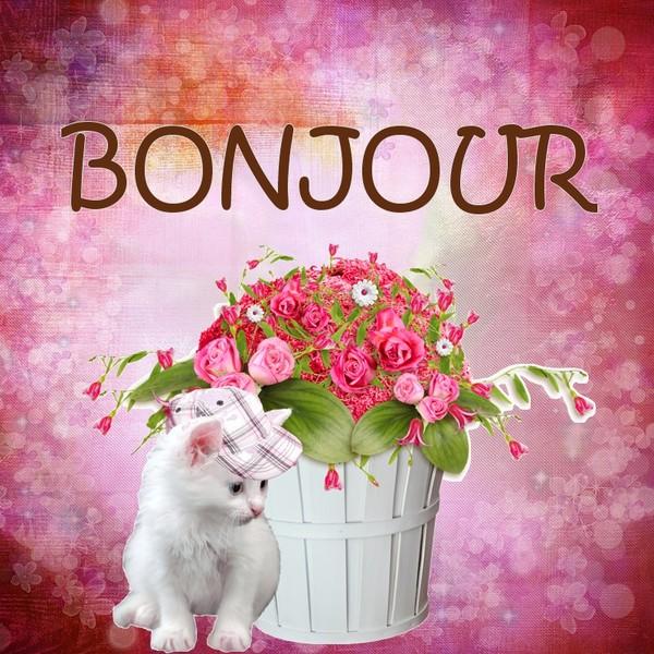 MARDI 06 JUIN 2017 Saint NORBERT 170606121323128097
