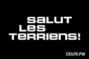 Salut les Terriens c8 2016-2017 replay tv