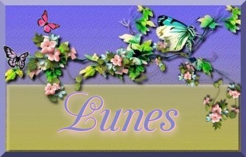 Guia de Hojas  170721071450139692