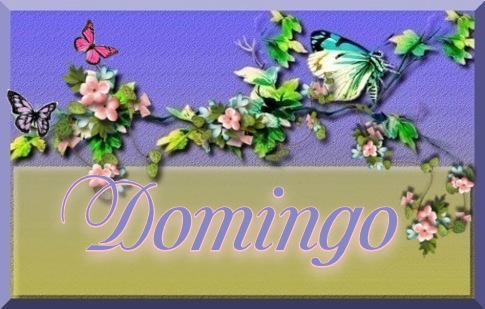 Guia de Hojas  170721071450826548