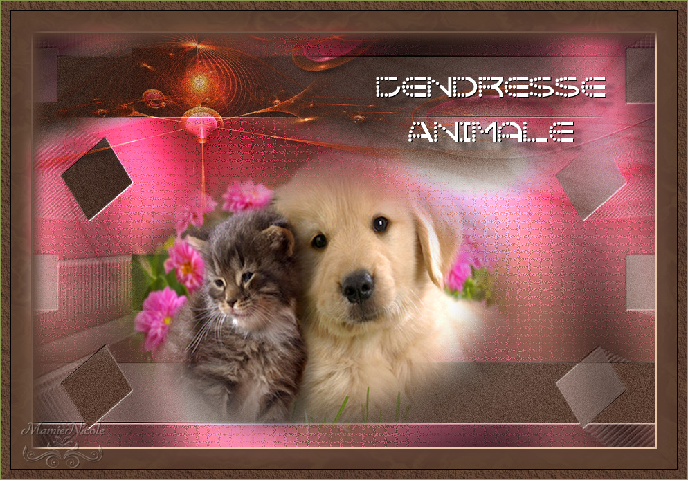 Tendresse Animale (PSP) 170726102153599434