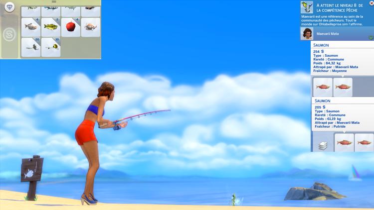 [Clos] Les défis Sims - Niveau 2 170802105527306911