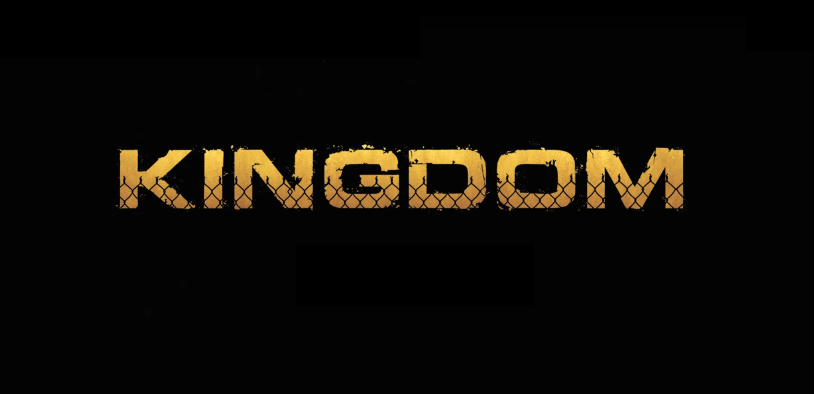 kingdom-saison-2b-test-dvd