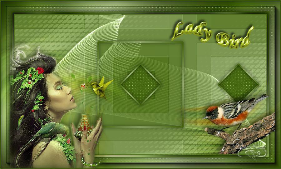Lady-bird(Psp) 170811120458579041